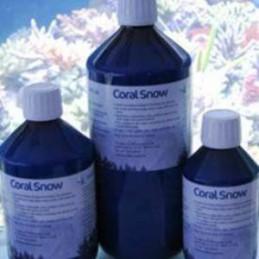 KorallenZucht Coral Snow...